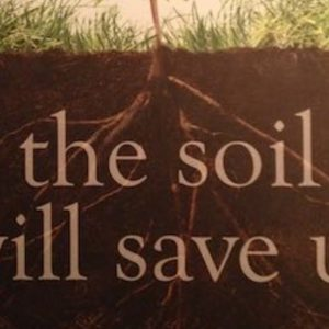 Kristin Ohlson's The Soil Will Save Us