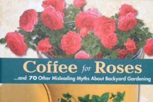 Coffee for Roses featured image
